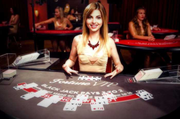 Try your hand at Live Casino Poker with real and rather cute ...